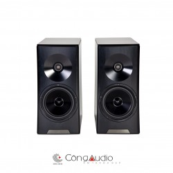 Loa YG Acoustics Hailey 2R